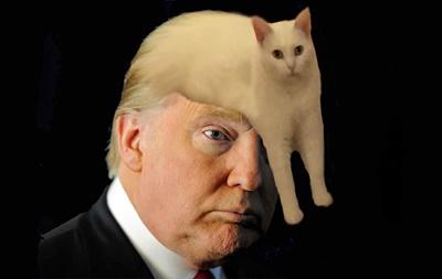 トランプ氏と猫
