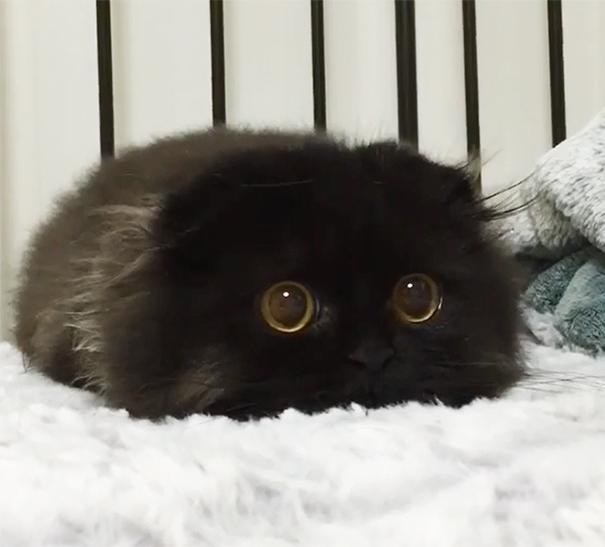 瞳キラキラ